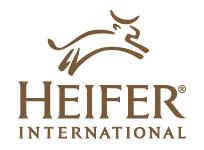 Heifer150